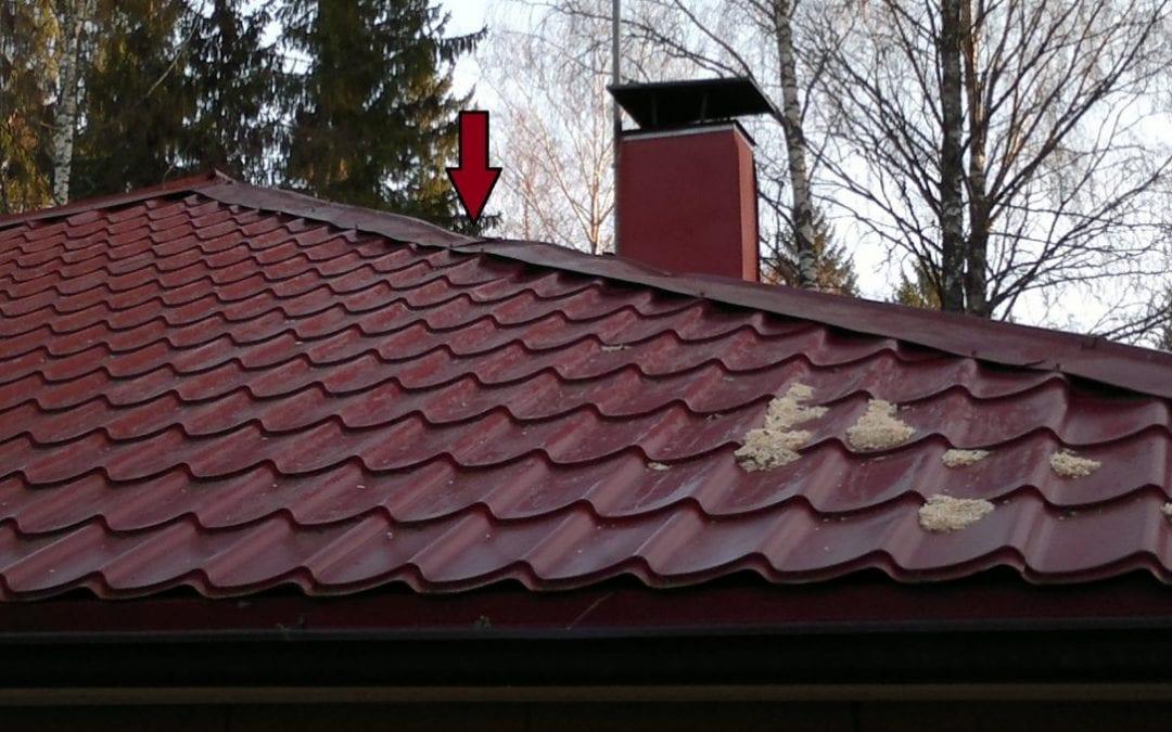 Ympäristö, myrsky, puun kaatuminen talon katolle